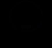 logo2solo_immersiverehab